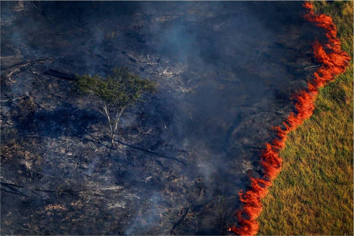 Impactos Socioambientais do desmatamento no Brasil.