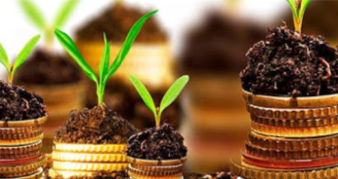 O CONAMA, a economia e o meio ambiente.
